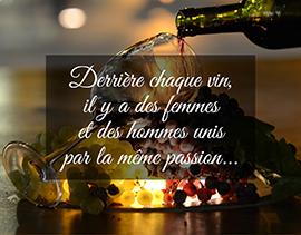 le vin nature une passion
