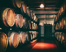 le vin nature une expérience