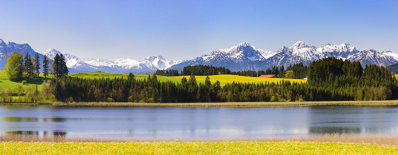 En osmose avec la nature face aux Alpes