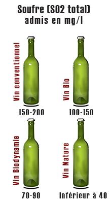 L'analyse du vin